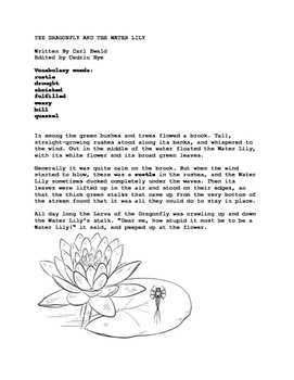 The Dragonfly and the Water Lily. Story with worksheets an