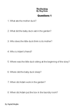 The Duckling by Meg Stein Reading Comprehension Questions