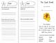 The Dust Bowl Trifold - Imagine It 4th Grade Unit 5 Week 4