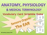 The Ear: Anatomy & Medical Terminology Vocabulary Scramble Puzzle