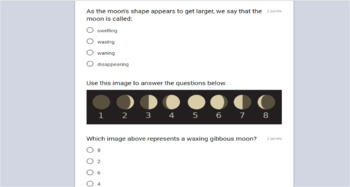 FREE Google Forms Assessment - Earth and its Moon