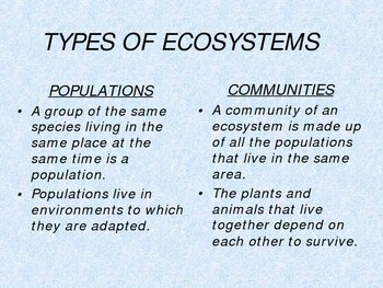 The Ecosystem Power Point and Quiz