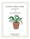 The Effect of Pollution on Plants Experiment