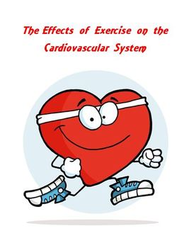 Cardiovascular System The Effects of Exercise Lab Activity