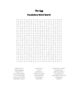 The Egg Vocabulary Word Search - Anderson