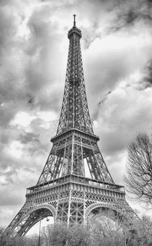 The Eiffel Tower in Black and White