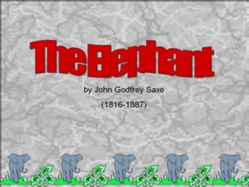 The Elephant - Observation Poem