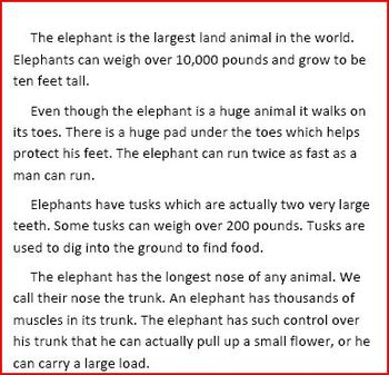 The Elephant Tons of Fun