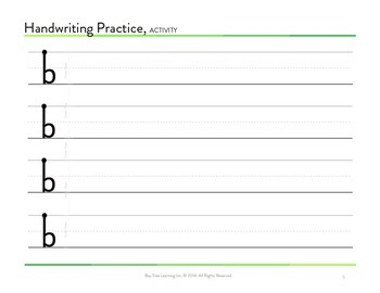 The Eliminating Letter Reversals Workbook for b and d