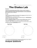 The Elodea Lab