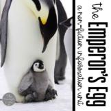 The Emperor's Egg Book Companion and Non Fiction Penguin Unit