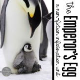 The Emperor's Egg Book Companion and Non Fiction Penguin Unit