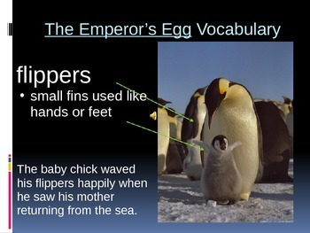 The Emperor's Egg Power Point Anticipation Guide