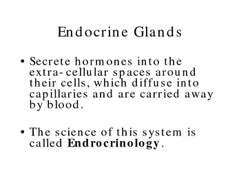 The Endocrine System Ppt