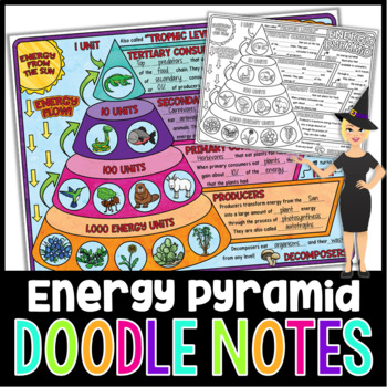 ENERGY PYRAMID SCIENCE DOODLE NOTES, INTERACTIVE NOTEBOOK, MINI ANCHOR CHART