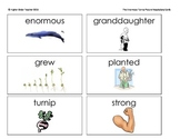 The Enormous Turnip Picture Vocabulary Cards