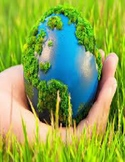 The Environment  Unit Study