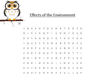 The Environment Word Search Bundle
