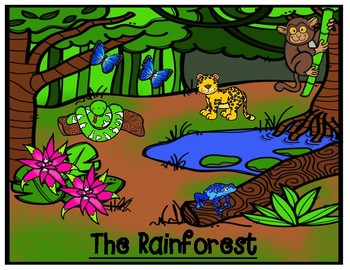 The Environment of the Rainforest Graphic Organizer