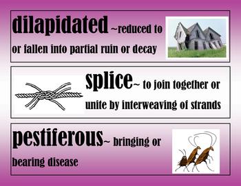 The Evolution of Calpurnia Tate-Word Wall