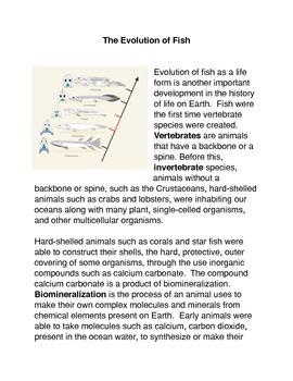 The Evolution of Fish Common Core Activity
