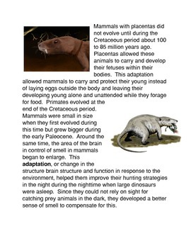 The Evolution of Mammals Common Core Activity