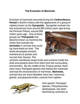 The Evolution of Mammals Common Core Activity