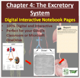 The Excretory System - Digital Interactive Notebook Pages