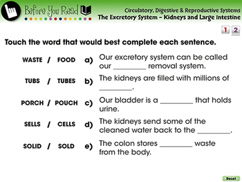 The Excretory System - Kidneys and Large Intestine - NOTEBOOK Gr. 3-8