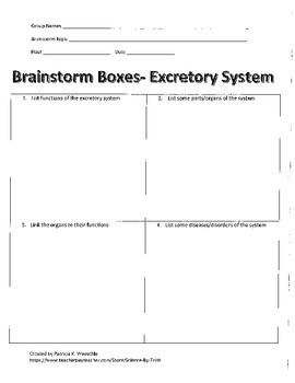 The Excretory System - Lesson plans Bundle