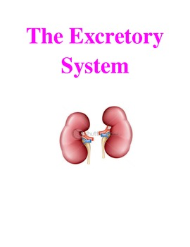 The Excretory System: Notes and Test