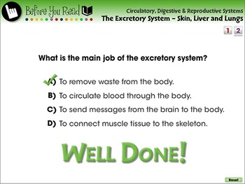 The Excretory System - Skin, Liver and Lungs - PC Gr. 3-8