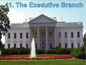 The Executive Branch (U.S. Government) Bundle with Video