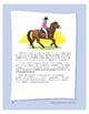 The Exmoor Pony
