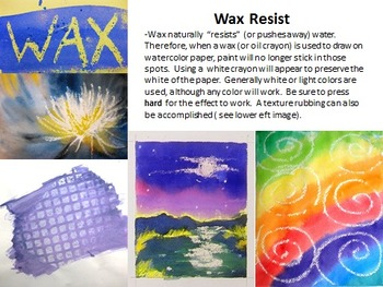 The Expressive Animal Watercolor Painting