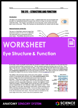Eye Anatomy - Structure and Function (Vision)