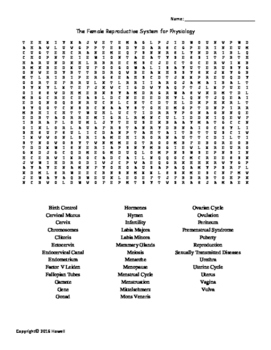 The Female Reproductive System Vocabulary Word Search for Physiology Students