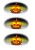 The Fierce Yellow Pumpkin Word Search