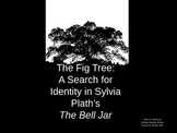 The Fig Tree - THE BELL JAR and a Search for Identity