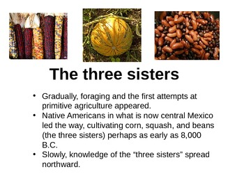 The First Americans Powerpoint to go with The First Americ
