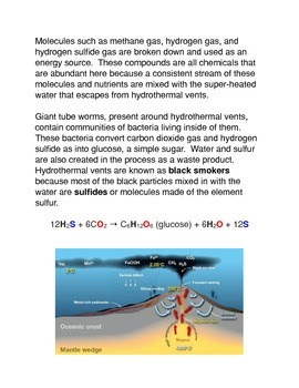 The First Evidence of Life in Hydrothermal Vents Common Core Activity