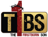 The Firstborn Son Leadership Development (men & boys) - CHARACTER Workbook