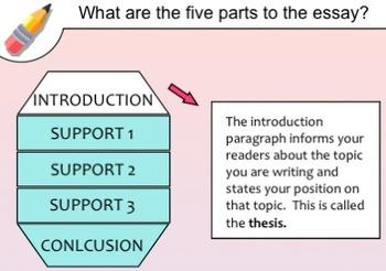 Essay Basics