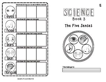 The Five Senses Activity Booklet