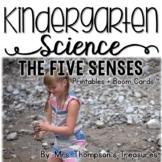 The Five Senses - Kindergarten Science NGSS