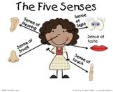 The Five Senses Poster
