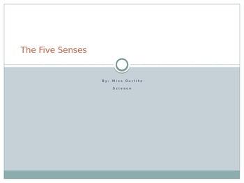 The Five Senses Power Point