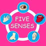 The Five Senses - PowerPoint Presentation