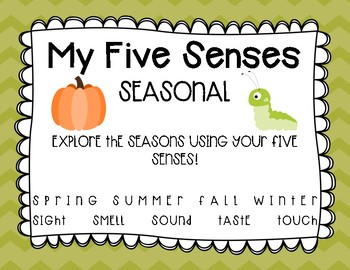 The Five Senses - Seasonal
