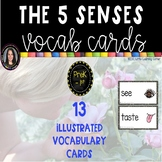 The Five Senses Vocabulary Word Wall Cards